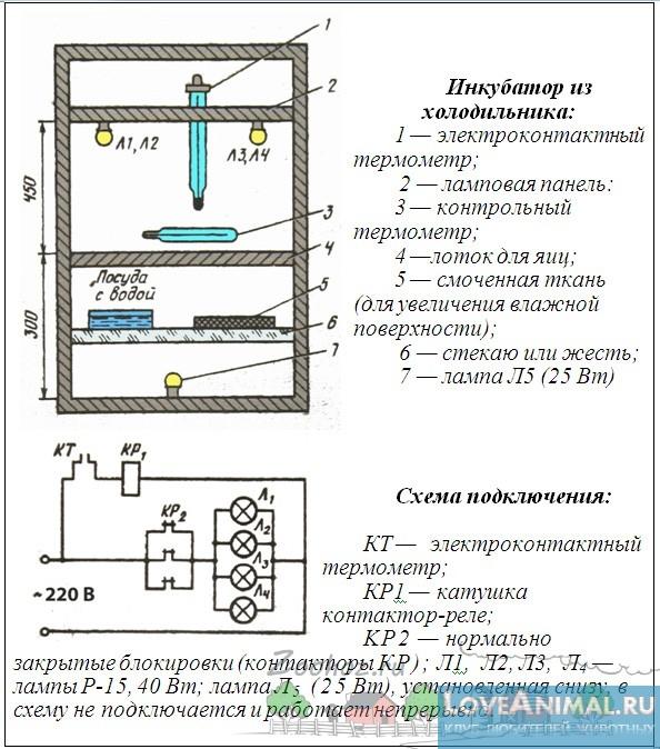Инкубатор для яиц схема