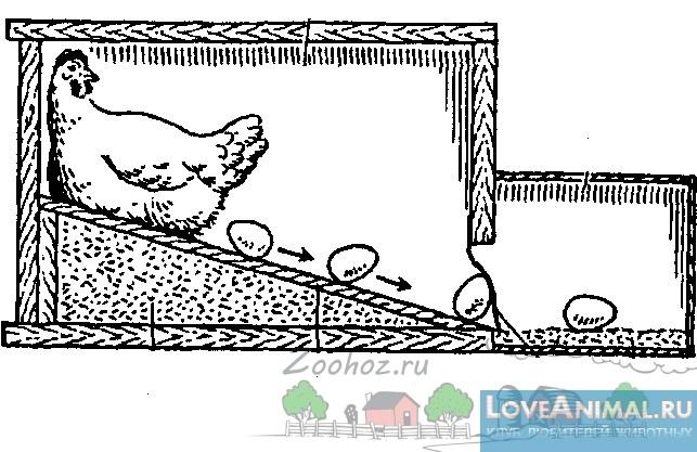 Курица в гнезде своими руками